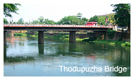 Thodupuzha Bridge